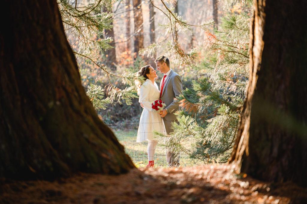 Martin Koch Fotografie After Wedding Shooting Mammutbäume