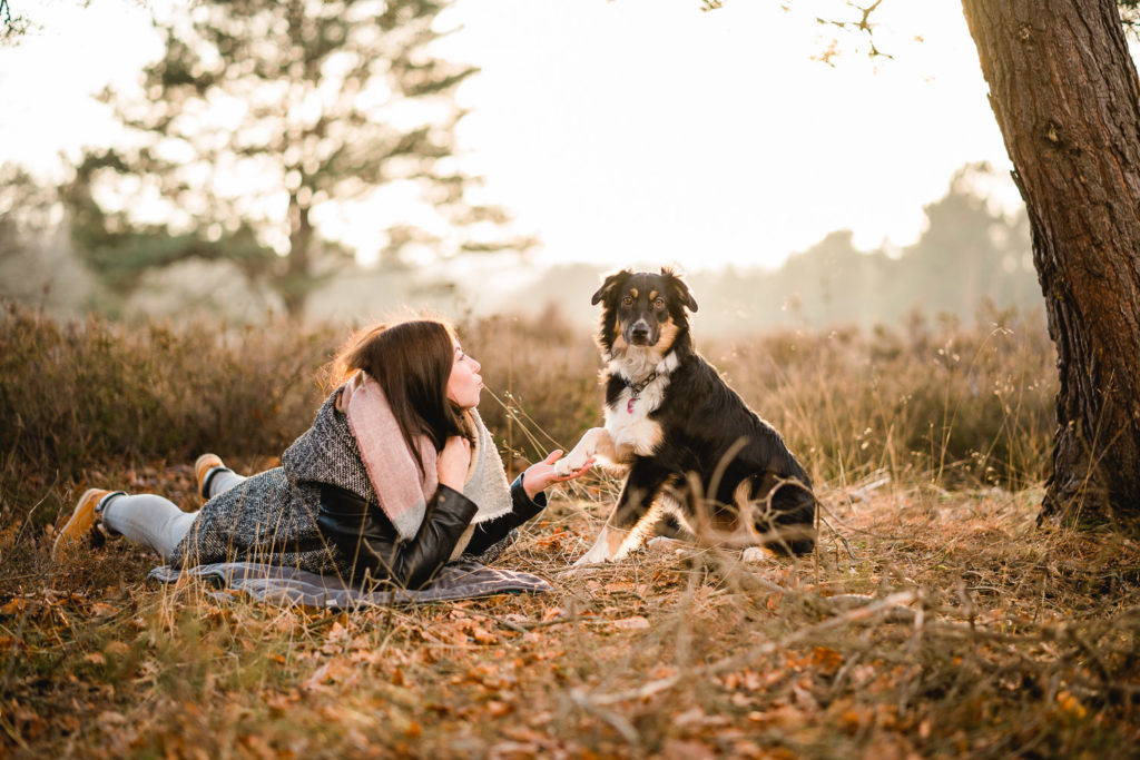 Martin Koch Fotografie Shooting Hund Mehlinger Heide